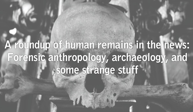 A roundup of human remains in the news: Forensic anthropology, archaeology, and some strange stuff